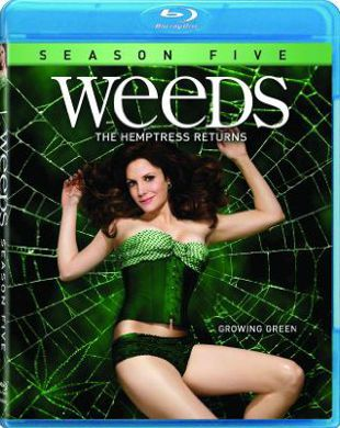 Weeds - Stagione 5 (2009) (Completa) BDMux 720P ITA AC3 ENG DTS x264 mkv