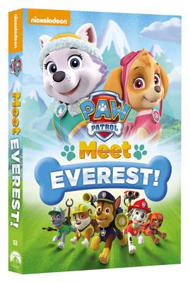 Paw Patrol - Conosciamo Everest! 2013 .avi AC3 DVDRIP - ITA - italiashare