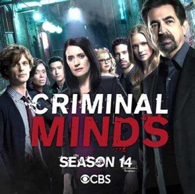 Criminal Minds - Stagione 14 (2018) (11/15) WEBMux 1080P HEVC ITA ENG DD5.1 x265 mkv