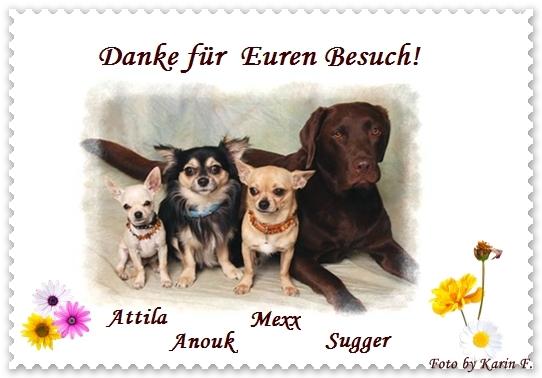 An den Beitrag angehängtes Bild: http://abload.de/img/dankefrbesuchubev7.jpg