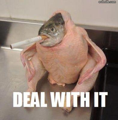 deal-with-it-fish3vuxx.jpg