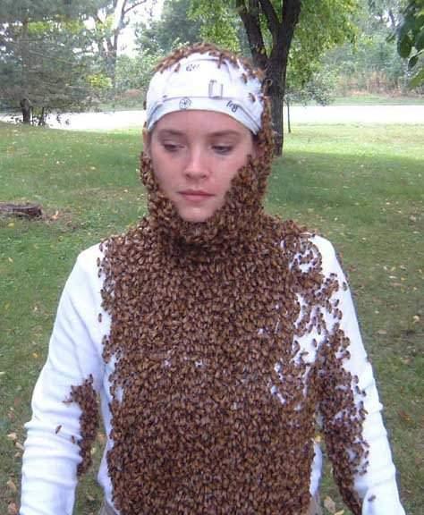 Pszczelarze w bzyczącym towarzystwie 20