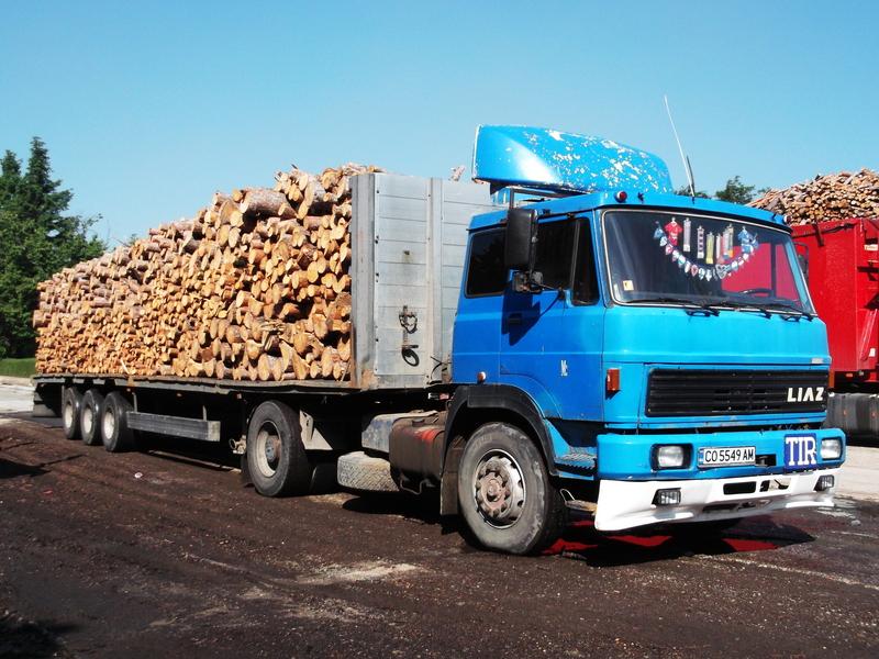 Real Truck Picture Contest 24 - Гласуване Dscf02533vff5