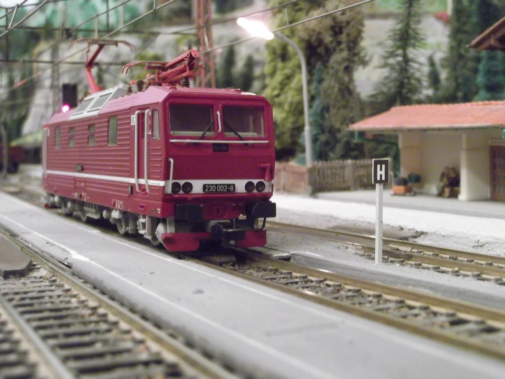 Die BR 230 der DR bzw. 180 der DB AG - auch Knödelpresse genannt Dscf2295upbzp