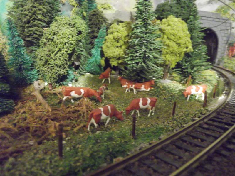 Links und rechts vom Bahnhof Dscf2389wtfhm