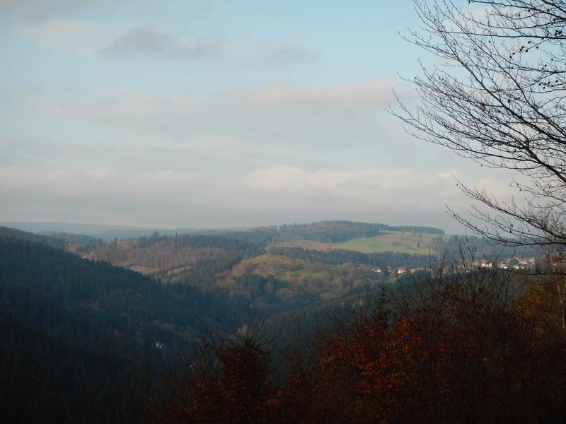 Blick vom großen Eschenberg 2009 und 2014 Dscn21849bsrg