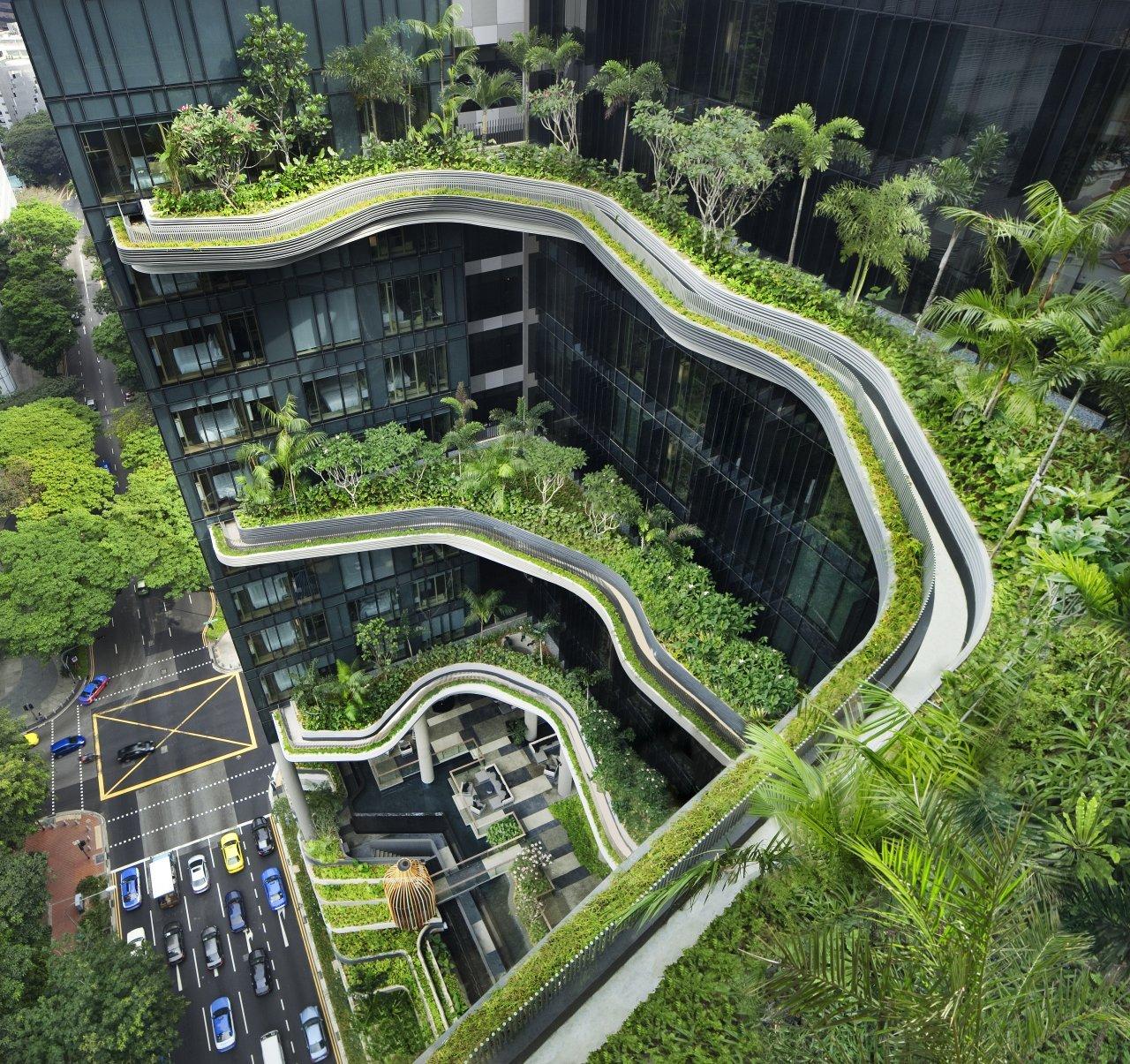Ogród w centrum miasta 1