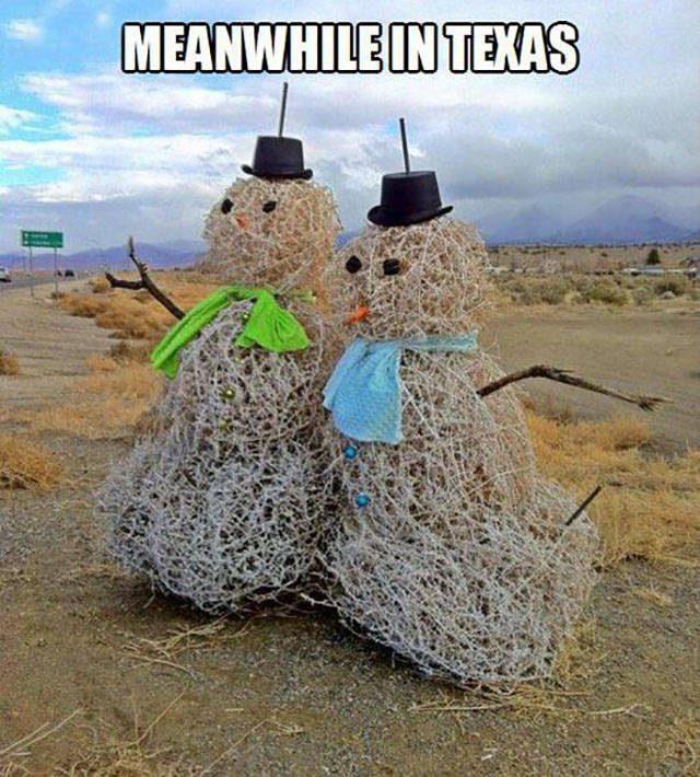 Tylko w Teksasie 6