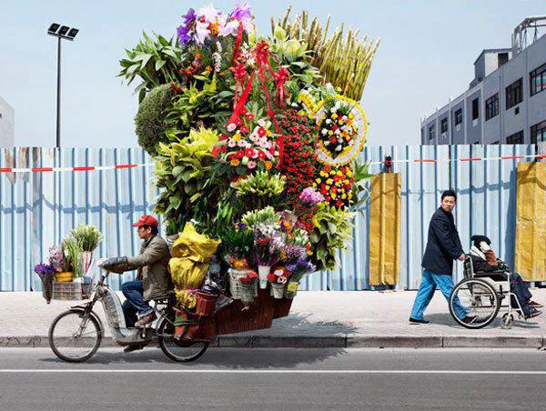 flowers-on-cyclepmuwj.jpg