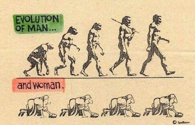 Ewolucja z przymrużeniem oka 22