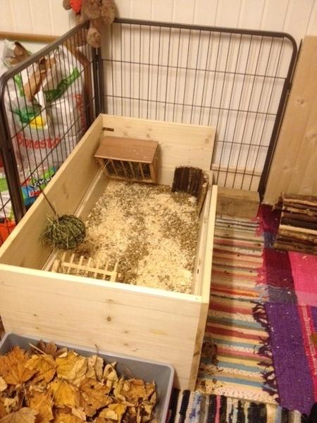 hilfe tips gesucht zum gehegbau in kleiner wohnung kaninchen forum by sweetrabbits made. Black Bedroom Furniture Sets. Home Design Ideas