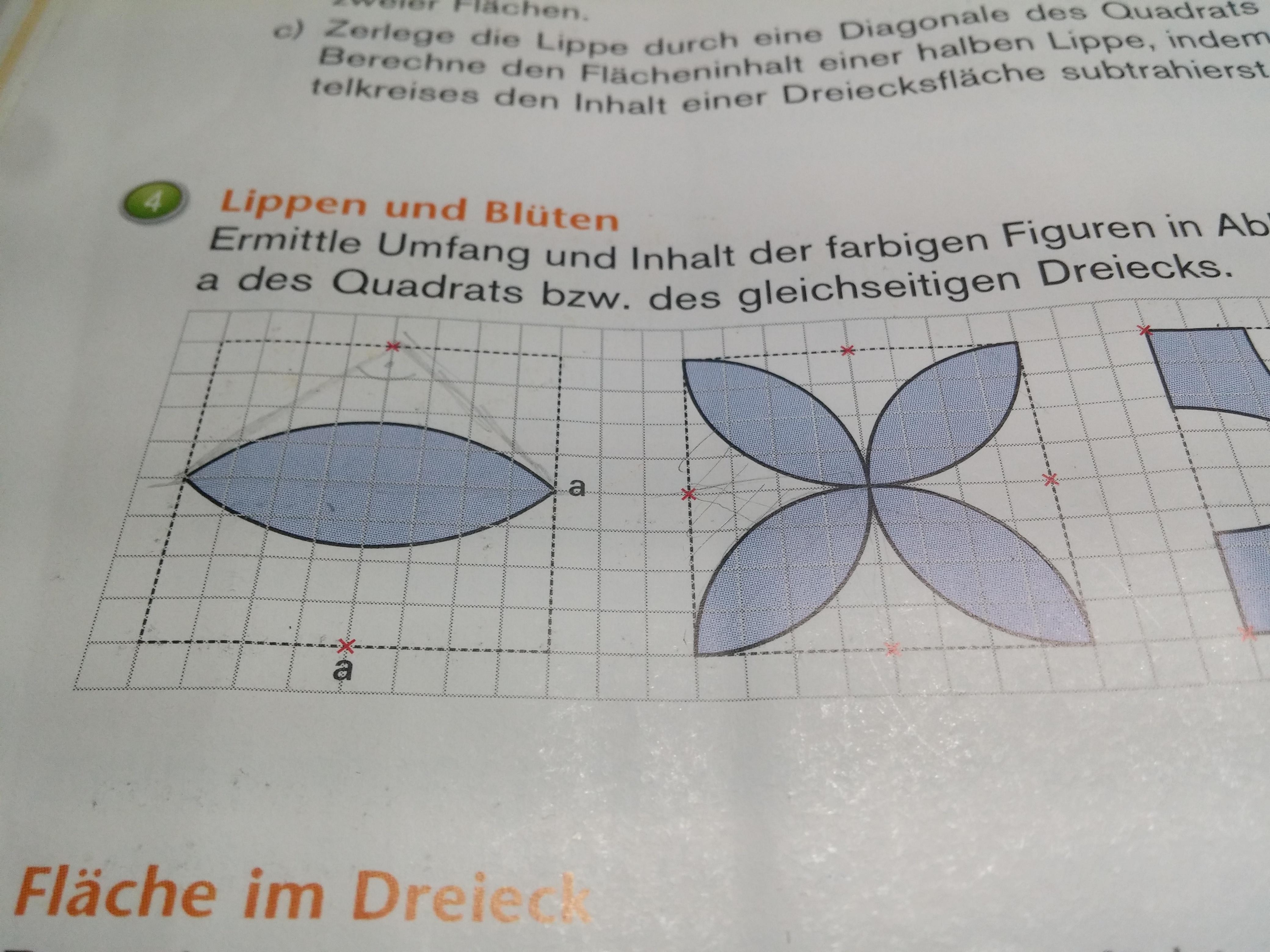 mathe:flächen-umfangberechnung? (mathe, mathematik)