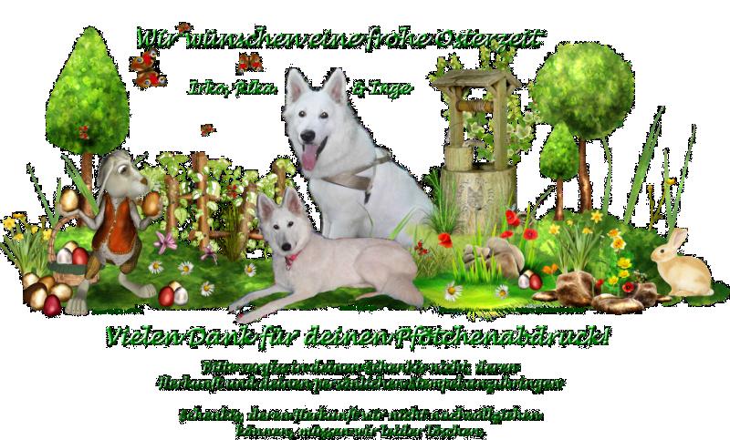 Gästebuch Banner - verlinkt mit http://irko-rika.hunde-homepage.com