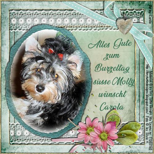 An den Beitrag angehängtes Bild: http://abload.de/img/gb.molly.0192qk83.png