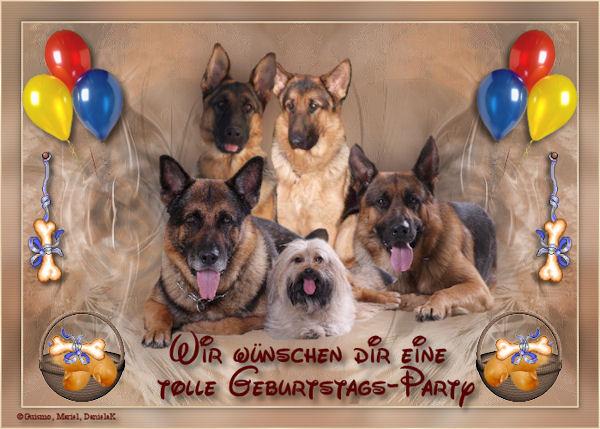 An den Beitrag angehängtes Bild: http://abload.de/img/geburtsta..1uxumj.jpg
