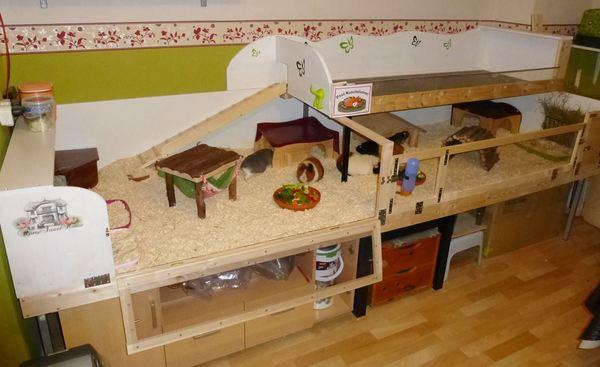 eigenbau und einige unsicherheiten meerschweinchen haltung. Black Bedroom Furniture Sets. Home Design Ideas