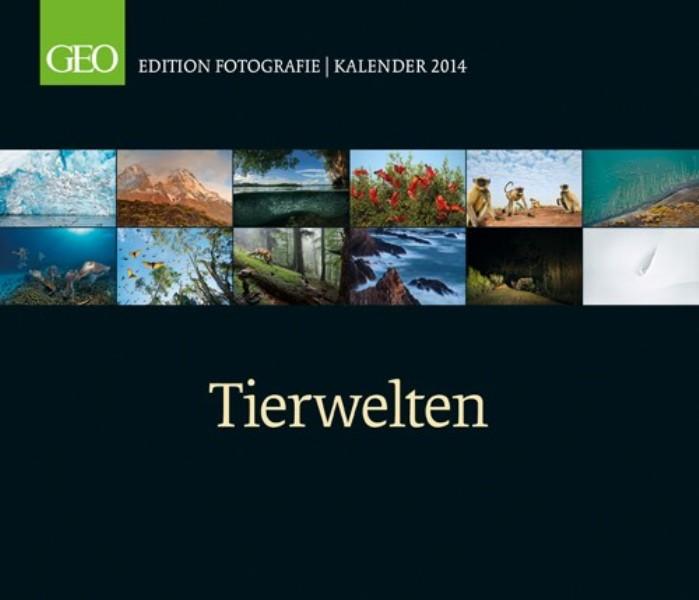 Sch ner geo wand kalender tierwelten 2014 gross 70x60 for Fenster 70x60