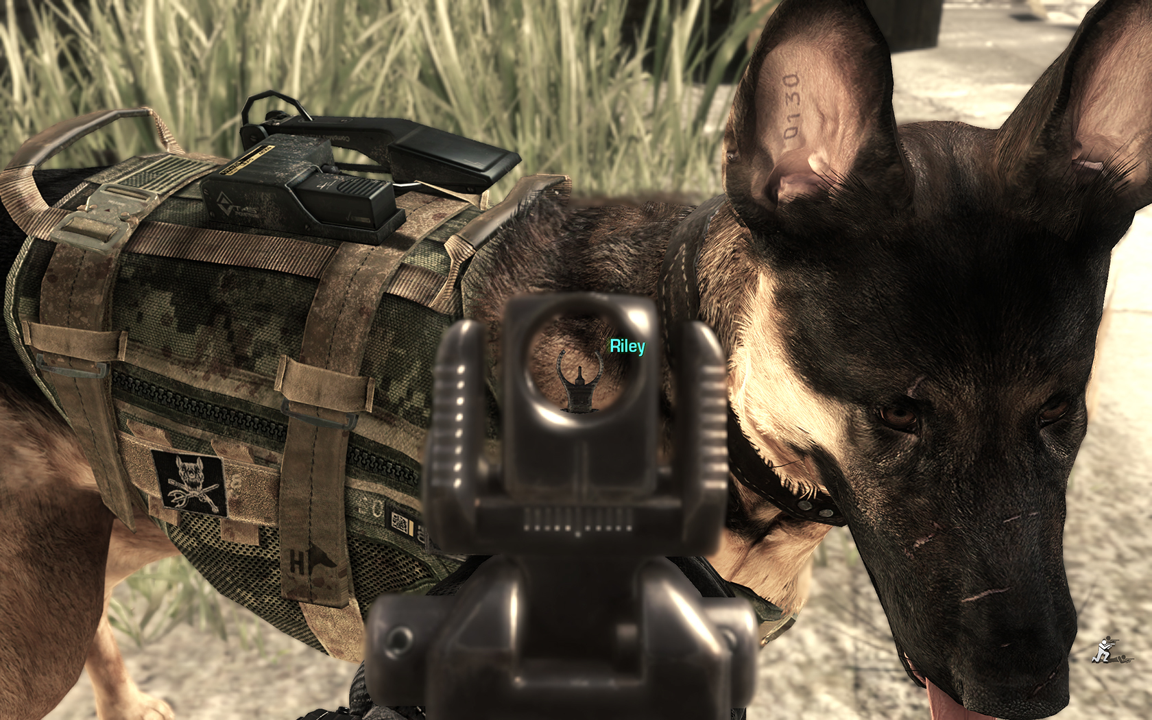 Image 548622 call of duty dog know your meme - Call Of Duty Ghosts Versus Battlefield 4 Screenshot Thread Serious