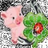 Kleiderkammer von glückschweinschen Glckschweinschen1ui1j