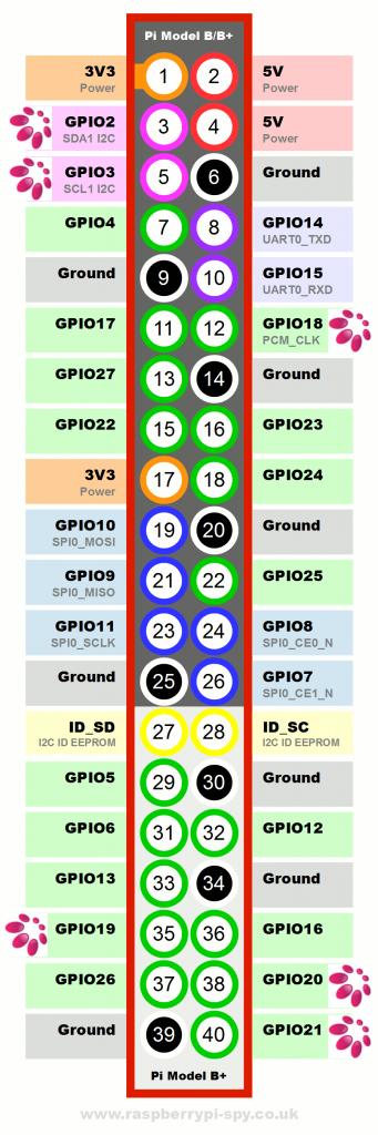 amp+ pin