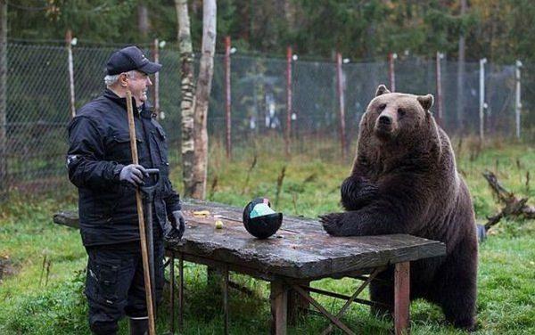 Tylko w Rosji #16 37