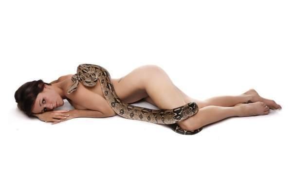 Laski z wężami 2