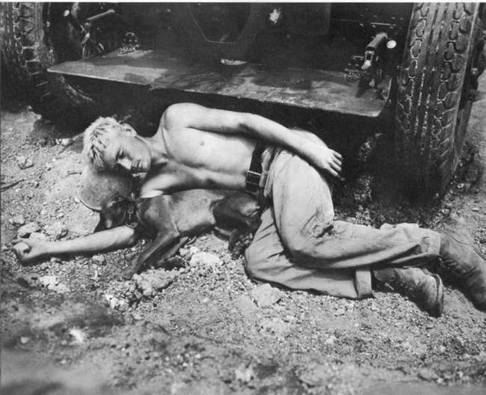 Żołnierze i zwierzaki 46