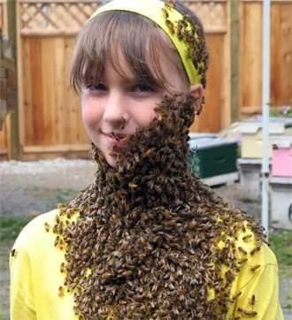 Pszczelarze w bzyczącym towarzystwie 10