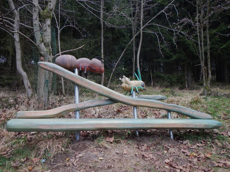 Ameisen Hexenstiegameisenhauf5auvs