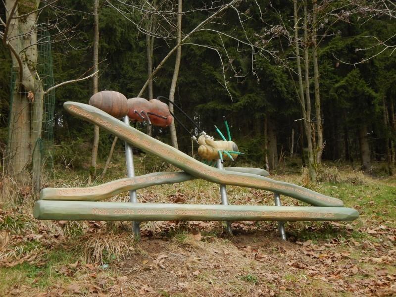Ameisen Hexenstiegameisenhaufg1uar