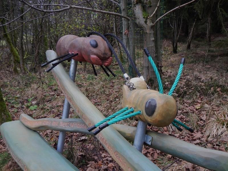 Ameisen Hexenstiegameisenhaufwhu9g