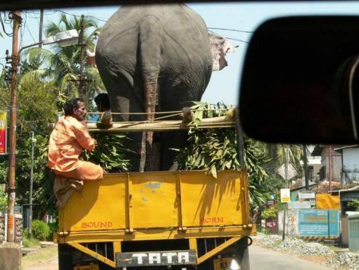 Takie rzeczy tylko w Indiach 31