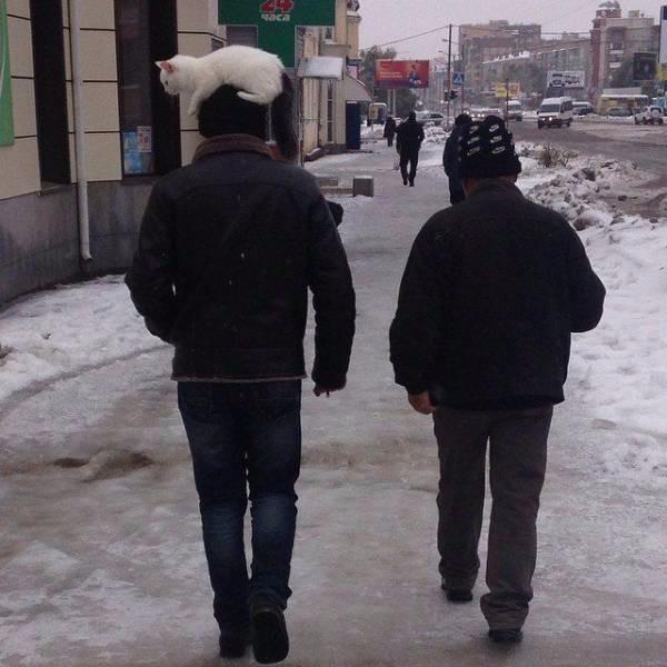[Resim: ilginc_ve_komik_14aduq6.jpg]