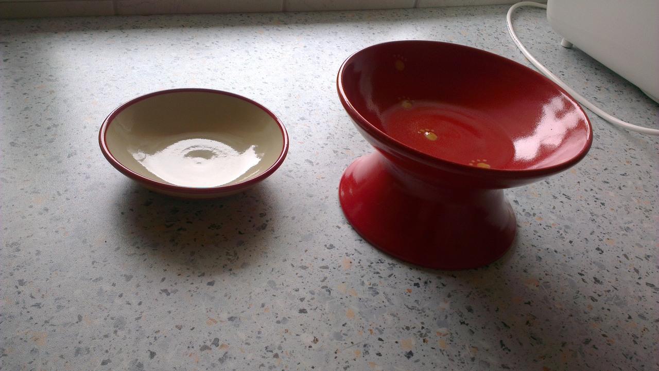 keramik im hof keramik f r katzen trinkbrunnen n pfe seite 8 katzen forum bergkatzen. Black Bedroom Furniture Sets. Home Design Ideas