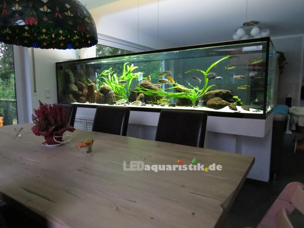 Aquarium Wohnzimmer Dekoration : Aquarium im wohnzimmerschrank integrieren dekoration