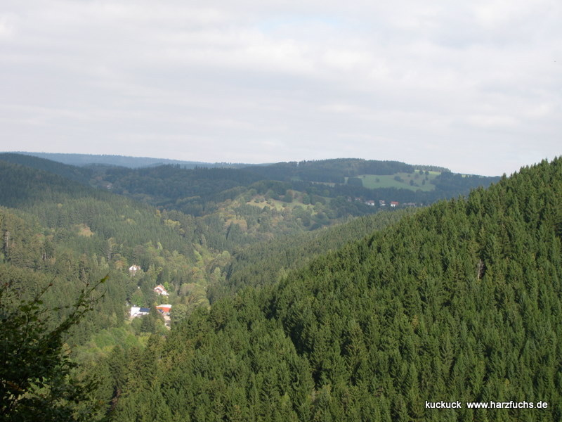 Blick vom großen Eschenberg 2009 und 2014 Img_5711gzvi