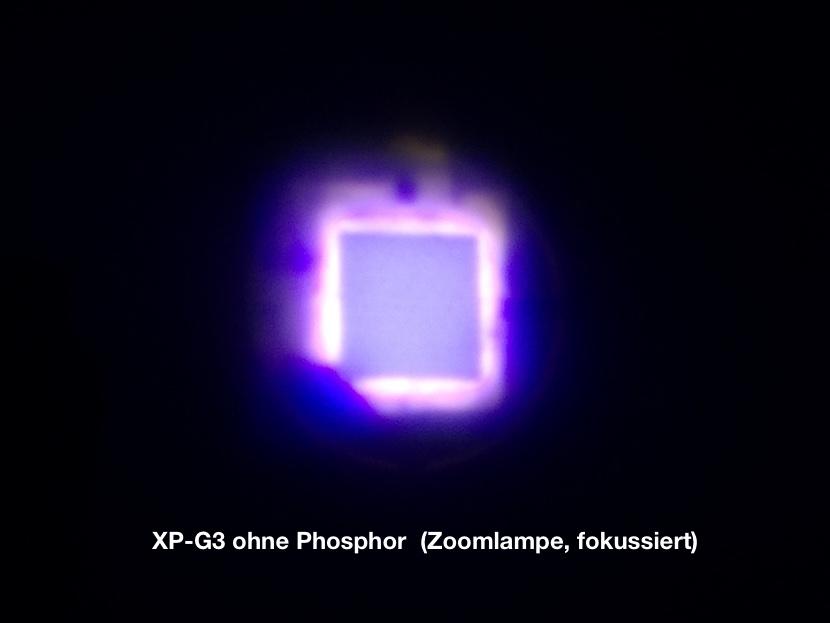 img_5876-xpg3ohnephostrs6i.jpg