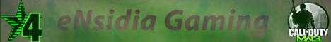 eNsidia Gaming