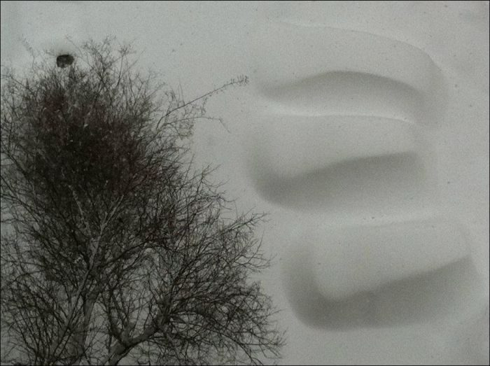 Śnieżna zima 16