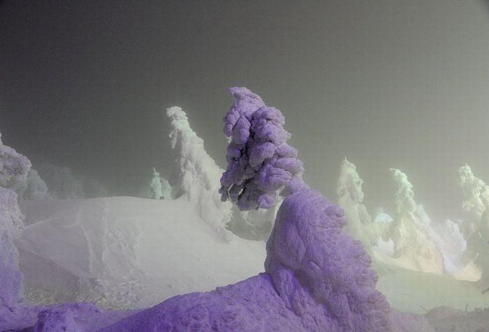 Juhyou - śnieżne potwory Japonii 2