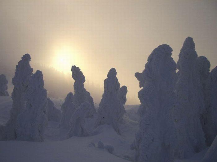 Juhyou - śnieżne potwory Japonii 22