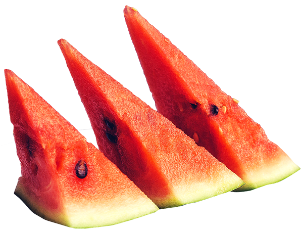 Watermelon slice images