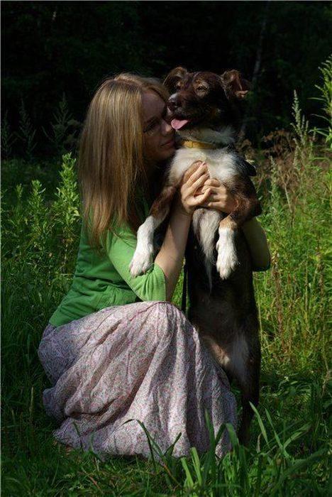 Psy, które dostały szansę na drugie życie 19