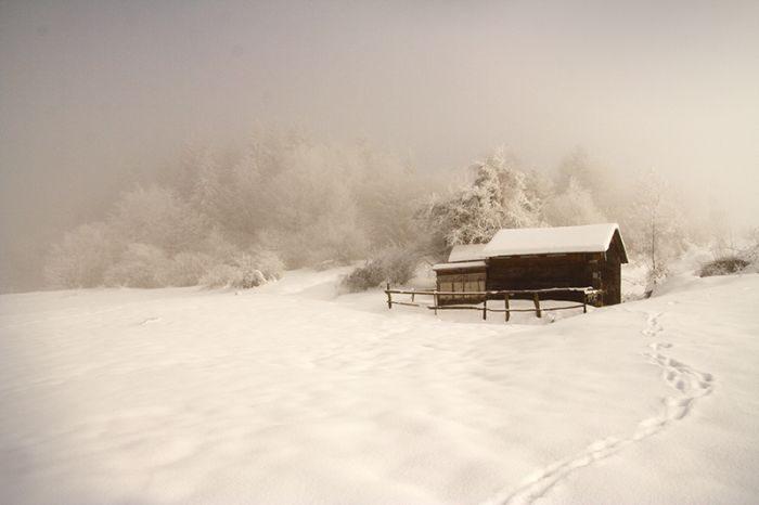 Zima na zdjęciach 12