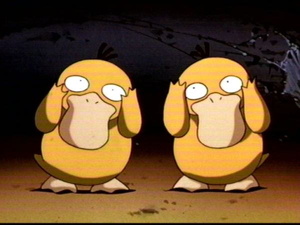 misty27s_psyduck_and_jqprm.png