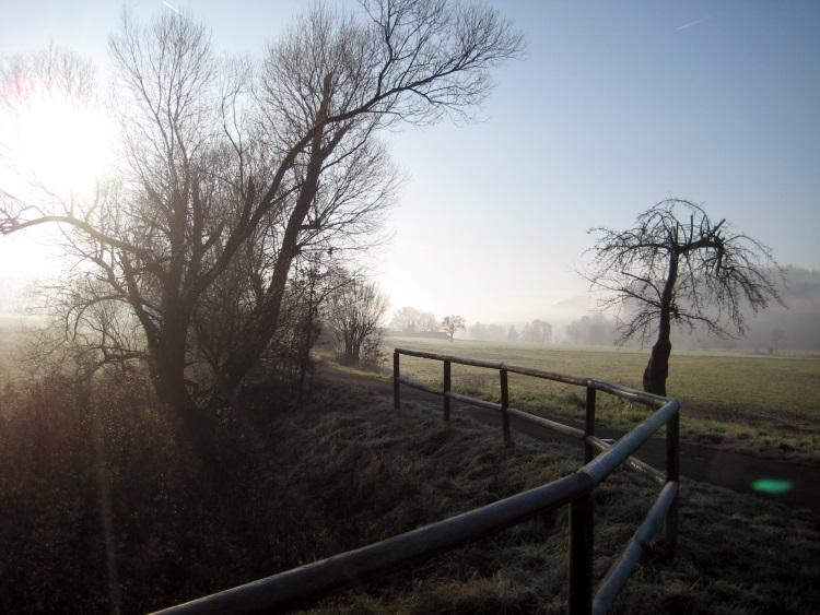 Morgenstimmung am Bahnradweg