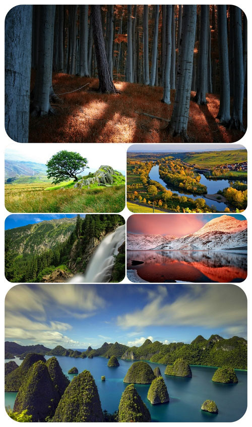 Most Wanted Nature Widescreen Wallpapers #558