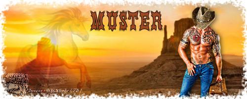 Sonstige Banner Musterbannercowboy1tu0o