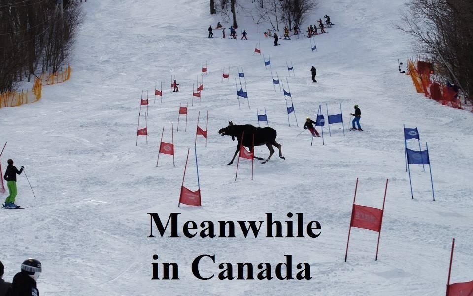 Tymczasem w Kanadzie 17