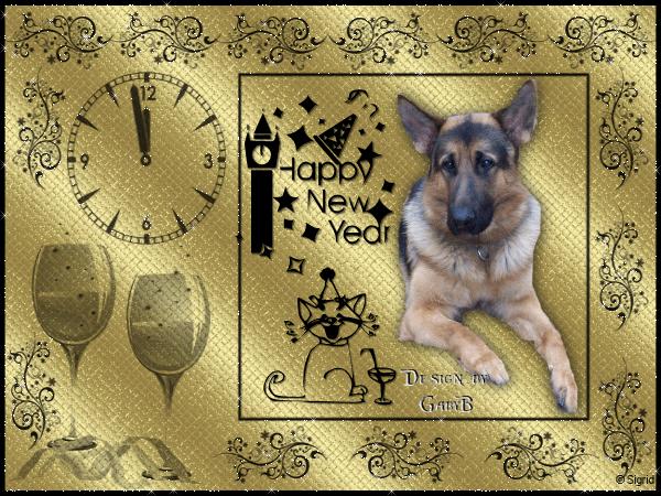 An den Beitrag angehängtes Bild: http://abload.de/img/neuesjahrvalko89kao.png